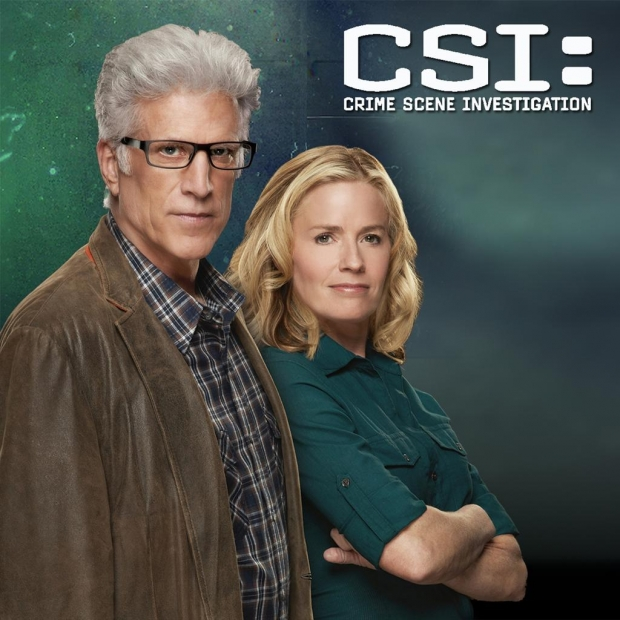 'CSI' Season 15 Episode 5 Spoiler: What Is The Team Up To Now?