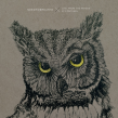 """NEEDTOBREATHE """"Live from the Woods"""" Album Review"""