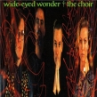 THE CHOIR to Tour Classic WIDE EYED WONDER Album with Former Bass Player Robin Spurs