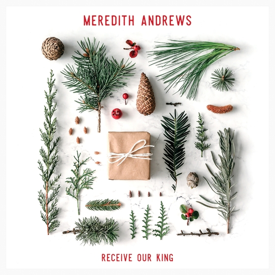 Meredith Andrews