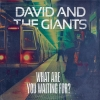david and the giants