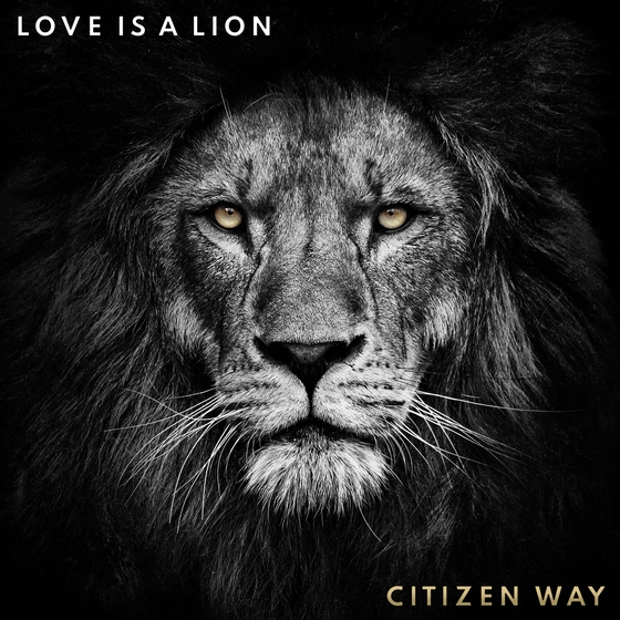 citizen's way