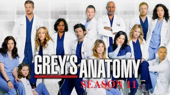 11 Staffel GreyS Anatomy